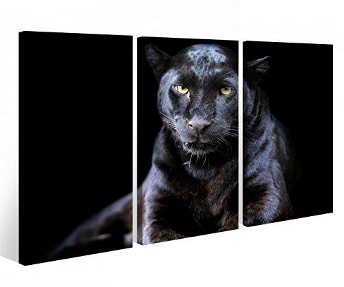Leinwandbild 3 Tlg. Puma schwarz Panther Jaguar Tier Leinwand Bild Bilder auf Keilrahmen Holz - fertig gerahmt 9O932, 3 tlg BxH:90x60cm (3Stk 30x 60cm)