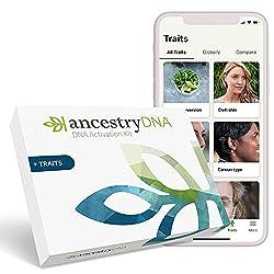 top rated AncestryDNA + Properties: Genetic Ethnicity + Property Test, AncestryDNA Test Kit, 25 +… 2021