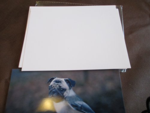 100 sheets 5 X 7 Glossy Photo Paper for Hp Epson Canon Brother Lexmark Kodak Photo Printers