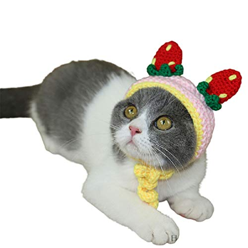 BAIZAN Invierno clido Encantador Hecho a Mano Traje de Punto Mascota, Cabeza de Fresa Linda Cabeza de Mascota,1,M