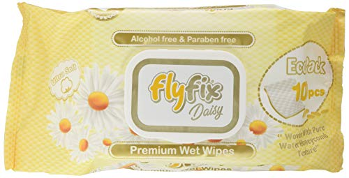 FlyFix TRFFXBD100021-12 - Toallitas Húmedas Fresh - 100 Pcs 12 paquetes, unisex