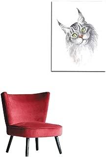 Best maine coon cat wallpaper Reviews