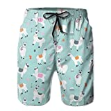 AMRANDOM Men Casual Llama Mint Green Board Shorts Slim Fit Summer Drawstring Beach Shorts, Surfing Trunks with Pockets for Teen Boy