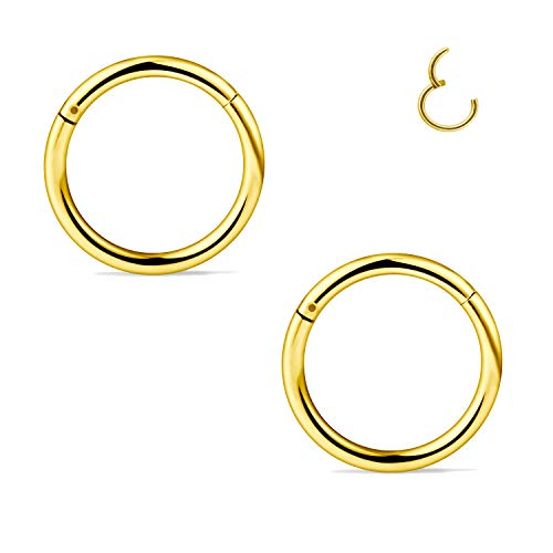 FECTAS Stainless Steel Segment Nose Ring Hoop Clicker Hinged Lip Septum Tragus Helix Cartilage Piercing Jewellery(18/16/14G)