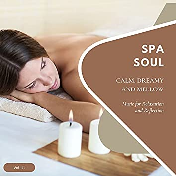 Spa Soul - Calm, Dreamy And Mellow Music For Relaxation And Reflextion, Vol. 11
