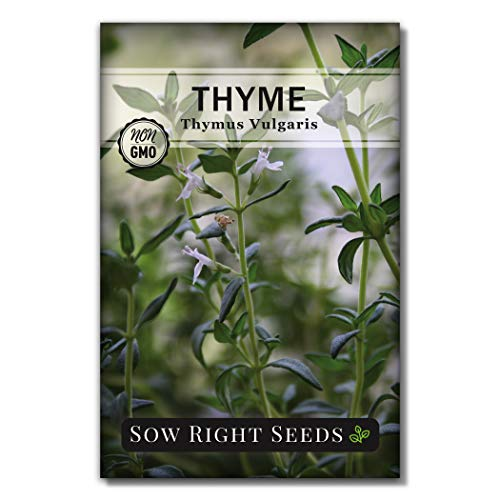Sow Right Seeds - Thyme Seed for Planting - All Non-GMO Heirloom Thyme Seeds...