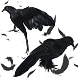 """2 Pack 12"""" + 14"""" Halloween Black Crows, Halloween Decor Birds Realistic Feathered Crow LifeSize Handmade Ravens Props Crow Standing Statue for Halloween Party, Outdoor, Home Decor"""