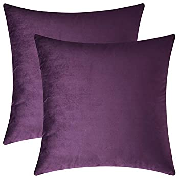 Mixhug Set of 2 Cozy Velvet Square Decorative Throw Pillow Covers for Couch and Bed Purple 18 x 18 Inches
