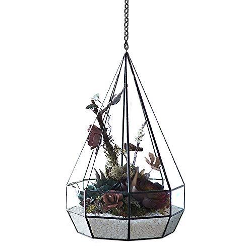Appeso vetro Geometric Terrariums, moderno diamante a forma di goccia in vetro trasparente interno giardino muschio micro paesaggio vaso contenitore/portacandela per piante grasse/Fern Moss