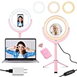 TAC TEC 10' Pink Selfie Ring Light with Stand and Makeup Mirror for Table/Desk with Phone Holder/Remote LED Small Mini Circle for Laptop Computer Recording/TikTok Portable Compatible with iPhone
