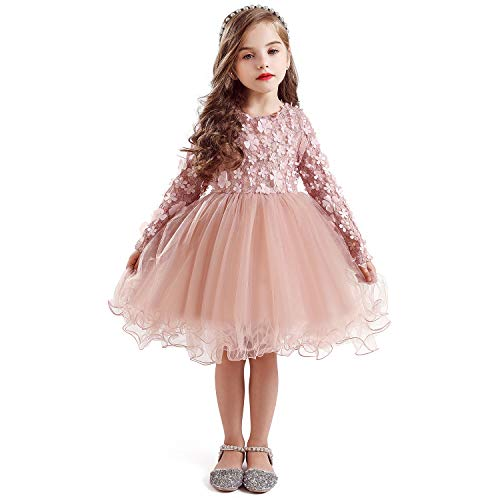 TTYAOVO Girls Longsleeve Lace 3D Flowers Tulle Layered Princess Party Dresses Size 2-3 Years Pink