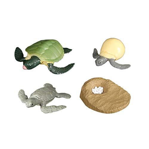 BESPORTBLE Ciclo de vida de una tortuga de mar verde, juguete Safari de animales del mar, juguetes para niños y estudiantes