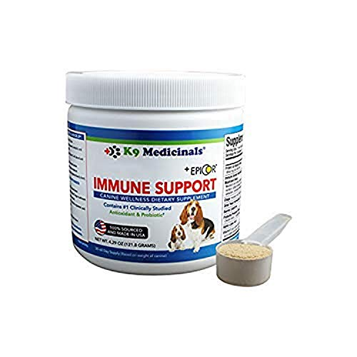Top 10 best selling list for good supplements for dogs with cancer