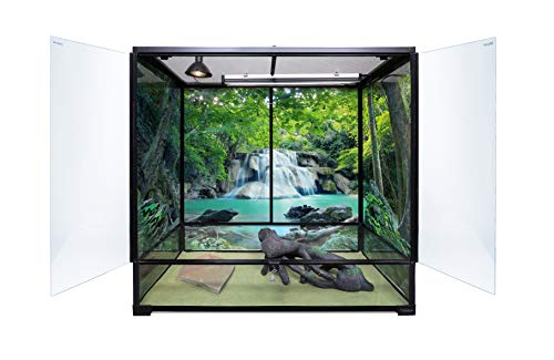 Carolina Custom Cages Terrarium, Extra-Tall Large 36Lx18Dx36H, Easy Assembly