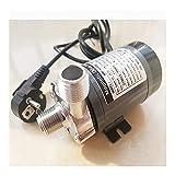 LCLXSH Bombas de Agua eléctricas Bomba de accionamiento magnético, Cabeza de Acero Inoxidable 304, Bomba Sumergible eléctrica (Color : BSPT Thread, Voltage : 220V)
