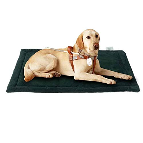 XYQ KIK ~ Das Hundebett, Crate Pad Premium-Plüsch wasserdichtes Hundebett waschbare Abdeckungen for Medium Small Large Dog-Color8-L (101 * 68cm), 2022 (Color : Color3, Size : M(88 * 57cm))