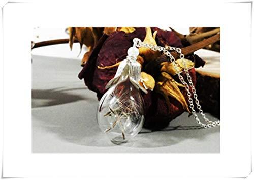 heng yuan tian cheng paardebloem ketting, maak een wens, paardebloem zaad ketting, Terrarium sieraden, glazen fles ketting