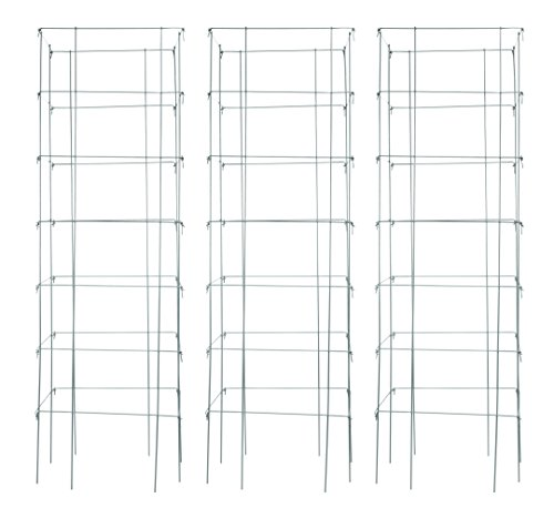 Burpee Extra Large Heavy Gauge Tomato 3 Cages | 18' x 18' x 58' | Made in...