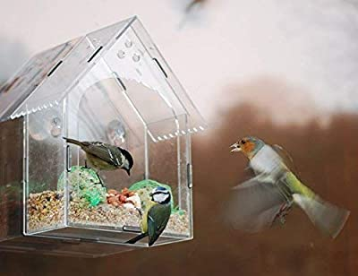 Garden mile? Unique Clear Hanging Perspex Squirrel proof Window Bird Feeder glass viewing bird feeding station table seed or peanut with hanging suction cups by Garden Mile?