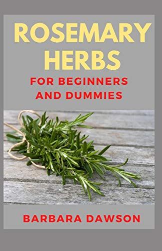 Rosemary Herb For Beginners and Dummies