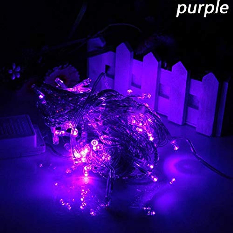 Purple, 20M 110V 200LEDs   10M 20M 30M 50M 100M LED String Light Patio Christmas Wedding Decoration AC220V Waterproof Outdoor Light Garland