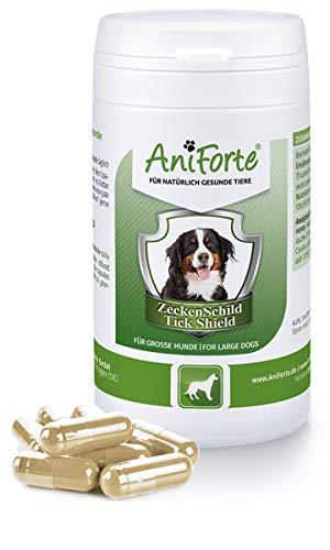 AniForte Zeckenschutz für Hunde (Groß 35-50 kg) 60 Kapseln - Natürlicher Zeckenschild durch Hautbarriere, Antizeckenmittel bei Parasiten, Vorbeugung Zeckenbiss, Zeckentabletten zur Zeckenabwehr