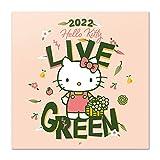 Calendario Hello Kitty 2022 incluye póster - Calendario 2022 pared - Calendario 12 meses - Calendario anual│ Calendario de pared - Calendario mensual - Producto con licencia oficial