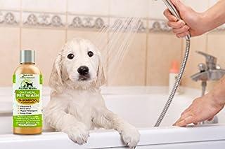 شراء برو بت يعمل كل الشامبو الطبيعي الكلب