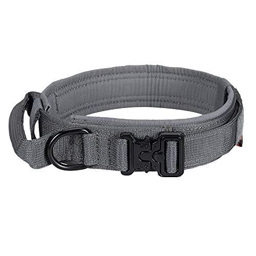 EXCELLENT ELITE SPANKER Taktisches Hundehalsband Mit Griff Halsband K9 Training Nylon verstellbar Nackengürtel für Hunde(Grau-L)