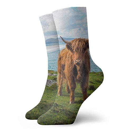 REordernow Kurze Socken für Männer, Frauen Highland Cow by The Sea Adult Short Socks Cotton Cool Socks for Mens Womens Yoga Hiking Cycling Running Soccer Sports