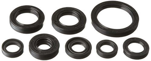 Winderosa 822228 Engine Oil Seal Kit Balance Shaft Oil Seal