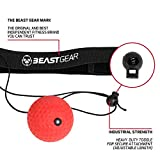 Zoom IMG-1 beast gear boxing reflex ball