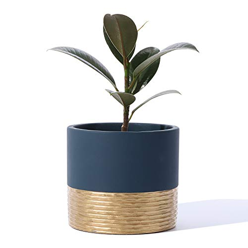 POTEY 055903 Cement Planter Pot - 5 Inch Indoor Concrete Planters Bonsai Container with Drainage Hole for Small Plants Succulent Cactus Flowers (Navy Blue+Golden, Plant NOT Included)