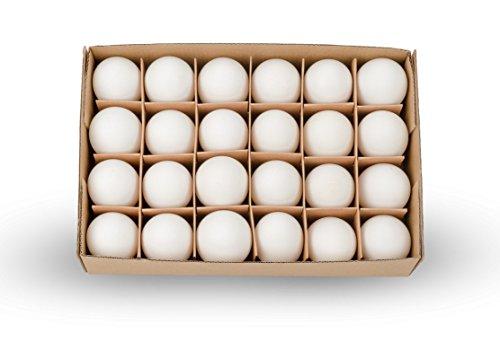 NaDeco Hühnereier weiß Packung von 24 Stück Hühnerei Dekoeier Ostereier Osterdeko Osterdekoration Hühnereier ausgeblasen ausgeblasene Hühnereier