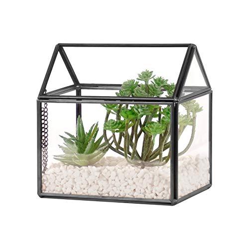 Orqihod Maceta de cristal con forma de terrario con tapa para plantas suculentas, jardín interior sin fugas (no incluye plantas)