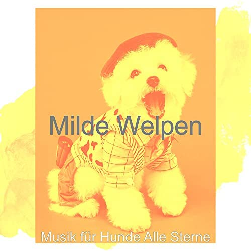 Musik für Hunde Alle Sterne