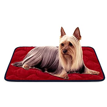 Panier Doux pour Chien, Lit Coussin de Luxe et Durable 70x50 cm, Tapis Antidérapant et Lavable de Chien Hero Dog (Rouge, Petite)