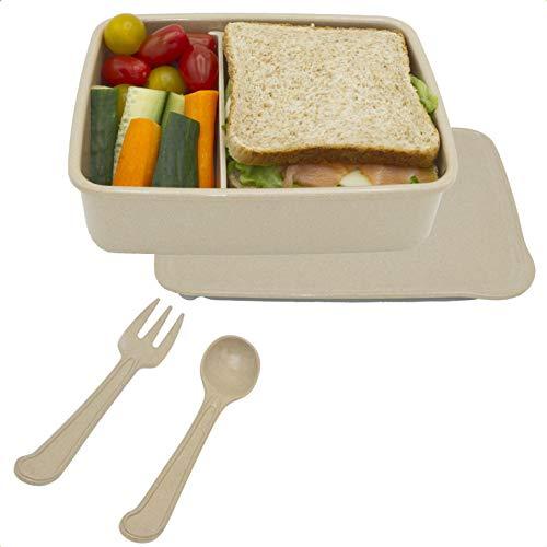 Green World Production Lunchbox mit Fächern Mikrowellen und Spülmaschinengeeignet ohne Plastik BPA freie Brotdose für Kinder & Erwachsene Bento Box Auslaufsichere 1300 ml Volumen Größe 20,5x15x6,5 cm