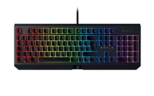 Razer BlackWidow (2019) - Mechanical Full-Size Gaming-Keyboard (Tastatur mit mechanischen Razer Green Switches, programmierbare Tasten, Kabel-Management, RGB Chroma Beleuchtung) DE-Layout