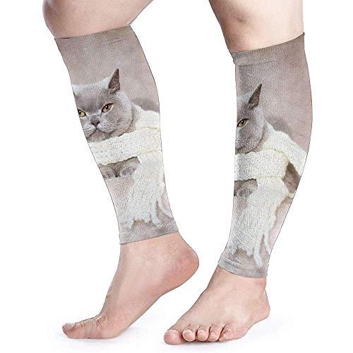 Katten Britse Korthaar Grijze Sjaal Kalf Compressie Mouw Mannen Womens Hardlopen Been Mouw voor Shin Splint Spier Pijn Relief
