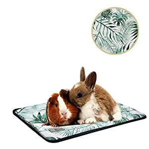 Oncpcare Summer Pet Small Animals Bed, Cool Small Animals Pad Resting Cozy Guinea Pig Pad Playing Kitty Mat Puppy Rug for Ferret Pig Squirrel Rabbit Chinchilla