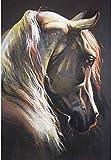 Kits de pintura rápida por números para adultos y niños Pintura al óleo de bricolaje Lienzo digital Arte de la pared Decoración del hogar - Arte Animal Cabeza de caballo 40x50CM
