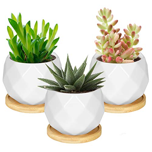 Sukkulente Blumentöpfe, Astoryou White Mini 3,5-Zoll-Blumenpflanzgefäß aus Keramik mit Bambusschale, 3er-Set Kaktuspflanzenhalter Home-Office-Tisch Schreibtischdekoration - Pflanzen Nicht enthalten