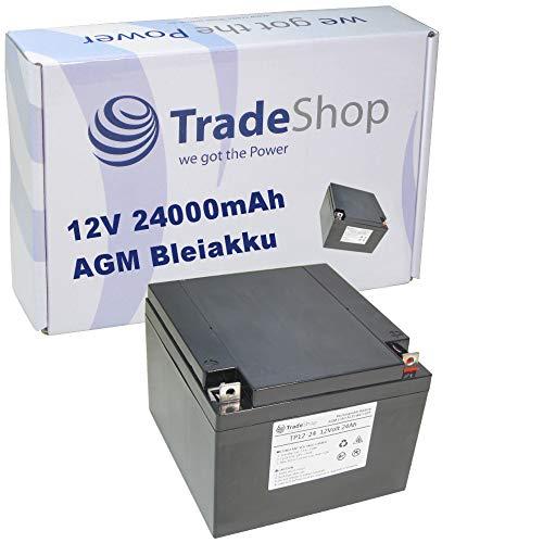 AGM Blei-Vlies-Akku Batterie wartungsfrei 12V 24Ah 24000mAh M5 Flachpol für Elektromobil Rollstuhl Reinigungsmaschinen Hebebühnen Camping Golftrolly