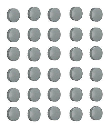 30x Magnete, Grau Ø 24mm, Haftmagnete für Whiteboard, Kühlschrankmagnet, Magnettafel, Magnetwand, Magnet Rund