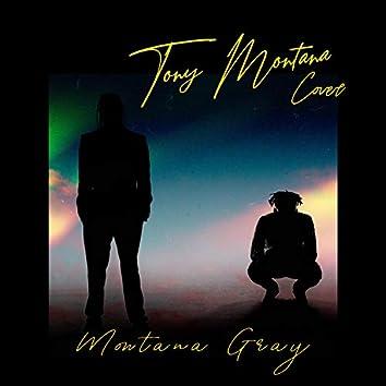 Tony Montana Cover