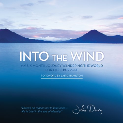Into the Wind audiobook cover art