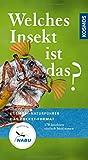 Welches Insekt ist das?: 170 Insekten einfach bestimmen (Kosmos-Naturführer Basics)