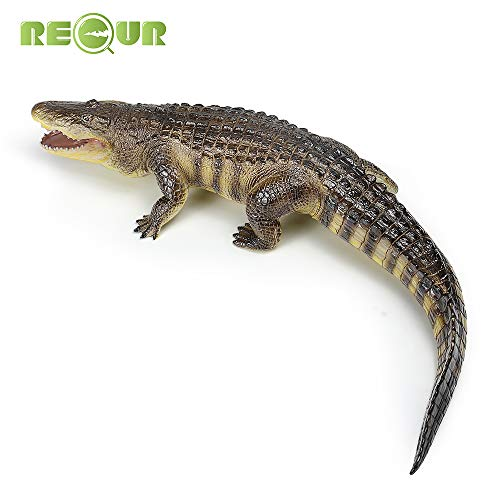 RECUR Krokodil Spielzeug Figur Amerikanisches Alligators Aktion Figuren Alligatoren Plastikmodell, 22,8 Zoll, kolossale Sammlerstücke, kreative Geschenke für Wildtiersammler und Kinderspielzeug