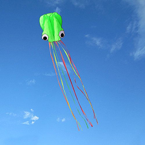 Hengda kite-Pack 2 Colors(Red